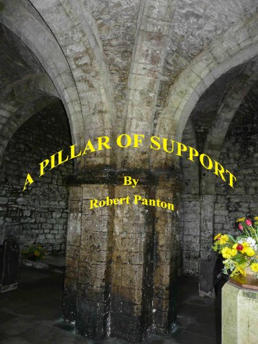 From Nurse to a Community Support Worker-A Pillar of Support (Personal Support Worker compare prices)