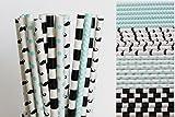 Mustache Little Man Paper Straw Mix - Light Blue, Black, White, Chevron, Polka Dot, Striped (75)