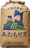 【新米】玄米 30kg 青森 青天の霹靂(へきれき) (1分づき米に)