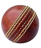 BSM test cricket ball