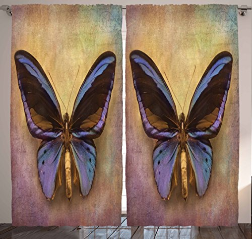 Ambesonne Monarch Decor Collection, Vintage Monarch Butterfly Picture and British Grunge Victorian Style, Window Treatments, Living Boys Girls Room Curtain 2 Panels Set, 108 X 84 Inches, Purple Brown (British Window Curtains compare prices)