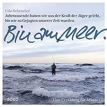 Bin am Meer: Eine Erzählung für Männer Hörbuch von Udo Schroeter Gesprochen von: Udo Schroeter