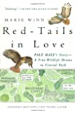 Red-Tails in Love: A Wildlife Drama in Central Park (Vintage Departures)
