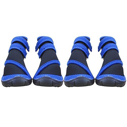 animal-gants-2-paires-semelle-en-caoutchouc-non-slip-sole-dimensions-110-x-88-mm