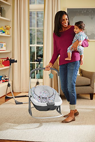 Graco Cozy Duet Swing Plus Rocker, Lambert