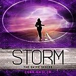 Storm: Swipe, Book 3 | Evan Angler