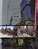 The 21st Century American City: Race, Ethnicity, and Multicultural Urban Life