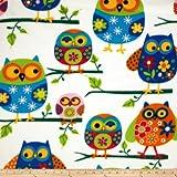 Winter Fleece Owls Multi Fabric By The Yard