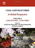 img - for Coal and Peat Fires: A Global Perspective: Volume 3: Case Studies - Coal Fires book / textbook / text book