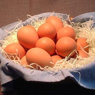 金運アップの大寒卵(宝友卵60個)