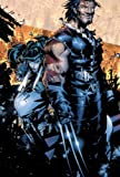 img - for X-Men: The New Age of Apocalypse book / textbook / text book