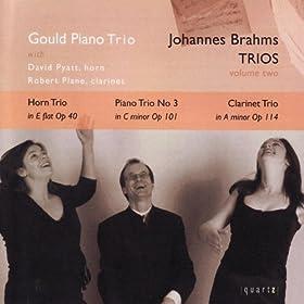 Brahms Trios - Volume Two