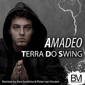 .com: Terra Do Swing (Pieter van Houten Remix): Amadeo: MP3 Downloads