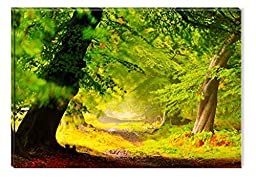 Startonight Canvas Wall Art Colored Life Line Like a Road in the Forest, Nature USA Design for Home Decor, Dual View Surprise Wall Art 31.5 X 47.2 Inch Original Art Painting!