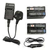 DSTE® 2x NP-F970 Rechargeable Li-ion Battery + DC01U Travel and Car Charger Adapter for Sony CCD-SC55 CCD-SC65 CCD-TR67 CCD-TR76 CCD-TR87 CCD-TR516 CCD-TR555 CCD-TR716 CCD-TR818 CCD-TR910 CCD-TR917 CCD-TR930 CCD-TR940 CCD-TR3000 CCD-TR3300 CCD-TRV15 CCD-