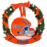 NCAA Florida Gators 20-Inch Helmet Door Wreath at Amazon.com