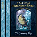 The Slippery Slope: A Series of Unfortunate Events, Book 10 (       UNABRIDGED) by Lemony Snicket Narrated by Tim Curry