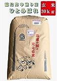 【新米】28年産福島県中通り産『ひとめぼれ』玄米 30kg