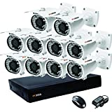 Puffin 16-Channel Dvr, 10(PF-6C833) 1000TVL Bullet CCTV Cameras