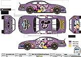 Disney 2004 Minnie Mouse NASCAR Daytona 500 Diecast Chevrolet Monte Carlo