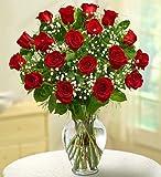 Rose Elegance Premium Long Stem Red Roses 18 Stem Red Roses by 1-800 Flowers