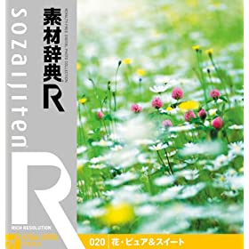 �f�ގ��T[R(�A�[��)] 020 �ԁE�s���A&�X�C�[�g