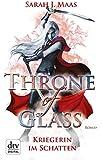 Throne of Glass - Kriegerin im Schatten: Roman (dtv junior)