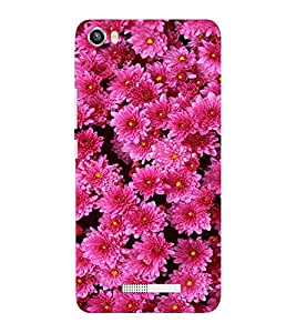 EPICCASE Garden love Mobile Back Case Cover For Lava Iris X8 (Designer Case)