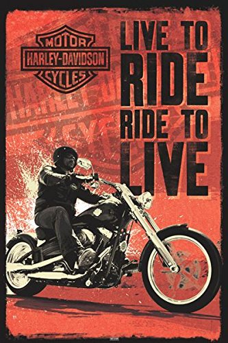 Motor Bike Posters: Harley Davidson - Live to Ride - 91.5x61cm (Motor Poster compare prices)