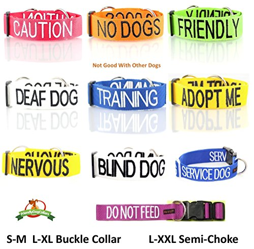 FRIENDLY-Green-Color-Coded-S-M-L-XL-Buckle-Dog-Collar-Known-As-Friendly-PREVENTS-Accidents-By-Warning-Others-of-Your-Dog-in-Advance-S-M-Collar-10-17Lx1W