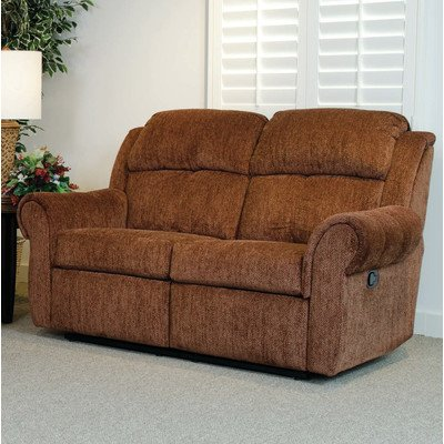 Double Reclining Loveseat Color: Jessie Cinnamon