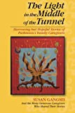 img - for The Light in the Middle of the Tunnel: Harrowing but Hopeful Stories of Parkinson's Family Caregivers book / textbook / text book