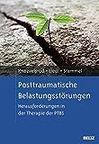 Posttraumatische Belastungsstörungen: Herausforderungen in der Therapie der PTBS