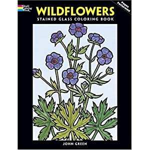 Amazon.com: Favorite Wildflowers Coloring Book (Dover Nature