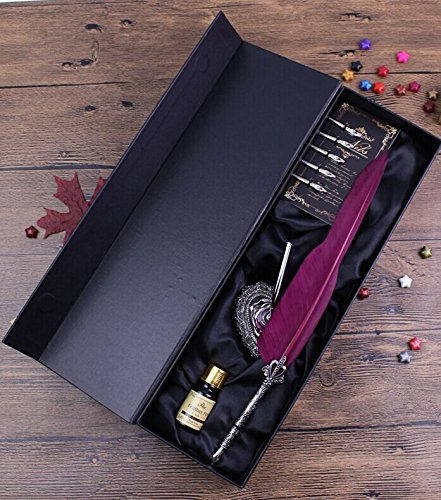 ECVISION Antique Feather Pen Set Metal Nibbed Calligraphy Pen Set Writing Quill (Wine Red) 0