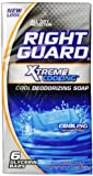 Right Guard Total Defense 5 Deodorizing Soap Cooling Bar, 6 Count, 4 Ounce Bars (Pack of 2)