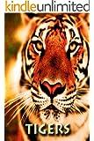 Tigers (Zoo Kids)