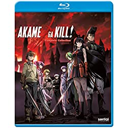 Akame Ga Kill: Complete Collection [Blu-ray]