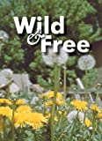 Wild & Free Game Cards - 54 Cards, perfect for the whole family, Learn about natures medicinal, edible and poisonus plants and herbs while having fun! ... enthusiasts, campers, hikers and scouts!