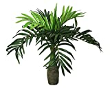 POLLINATION CHAMPAGNE PALM ARTIFICIAL PLANT