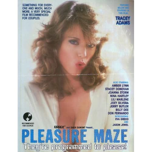 Pleasure Maze Movie Poster (27 x 40 Inches   69cm x 102cm) (1986)  (Tracey Adams)(Nina Hartley)(Stacey Donovan)(Joanna Storm)