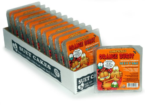 Heath Outdoor Products DD-14G Garfield Orange Burst Suet Cake, Case Of 12