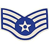 U.S. Air Force E-5 Staff Sergeant Small Hat Pin