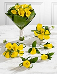 Yellow Wedding Calla Lily Collection 2