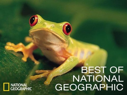 national geographic most amazing photos