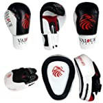 14oz Boxing Gloves & Focus Pads &#x26...