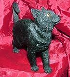 British Shorthair Cat Ornament by Leonardo