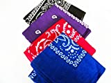 Four Pack Paisley Design Bandanas black purple blue red. fast post