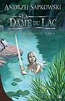 La saga du sorceleur, Tome 5 : La dame du lac