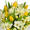 FREE Delivery - Mellow Yellow Bouquet - A luscious arrangement of Yellow Roses and fragrant White Freesias